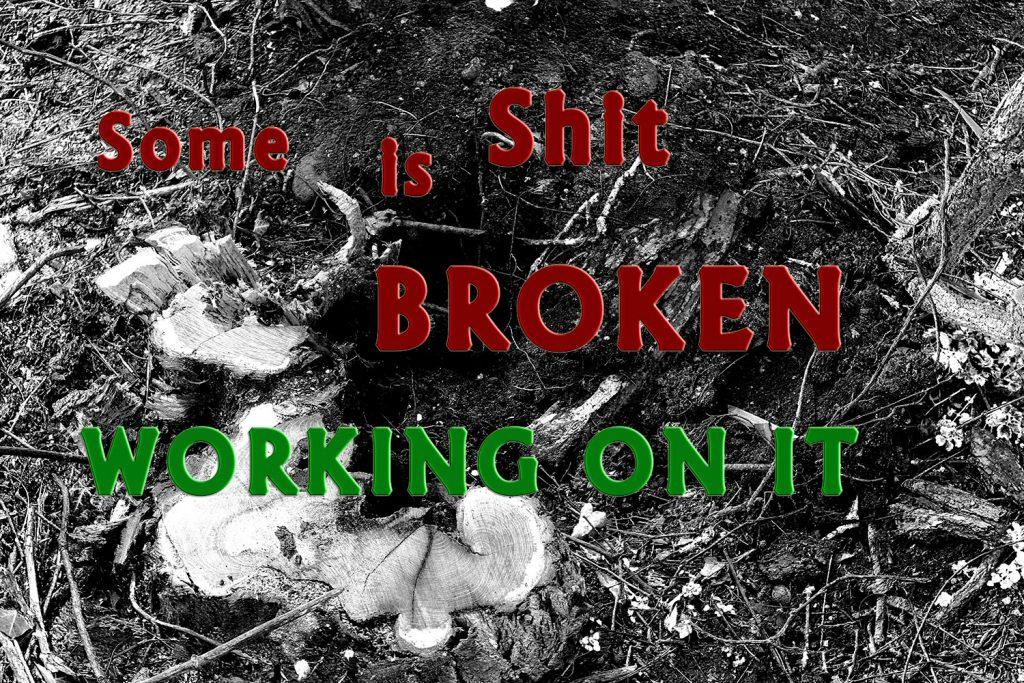 Logo: Some Shit is Broken ...