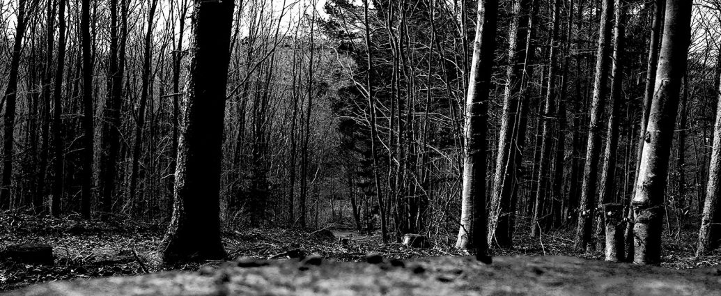 Eigenes Foto: Tagnacht