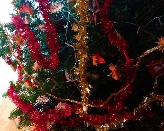 Eigenes Foto - Weihnachtsgruss