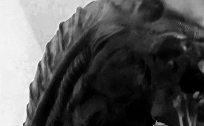 Eigenes Video: Kollege Alien, 2
